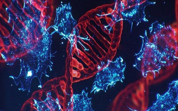 Đây là những trường hợp có nguy cơ mắc bệnh ung thư gan rất cao, số 3 nhiều người mắc phải - Ảnh 4.