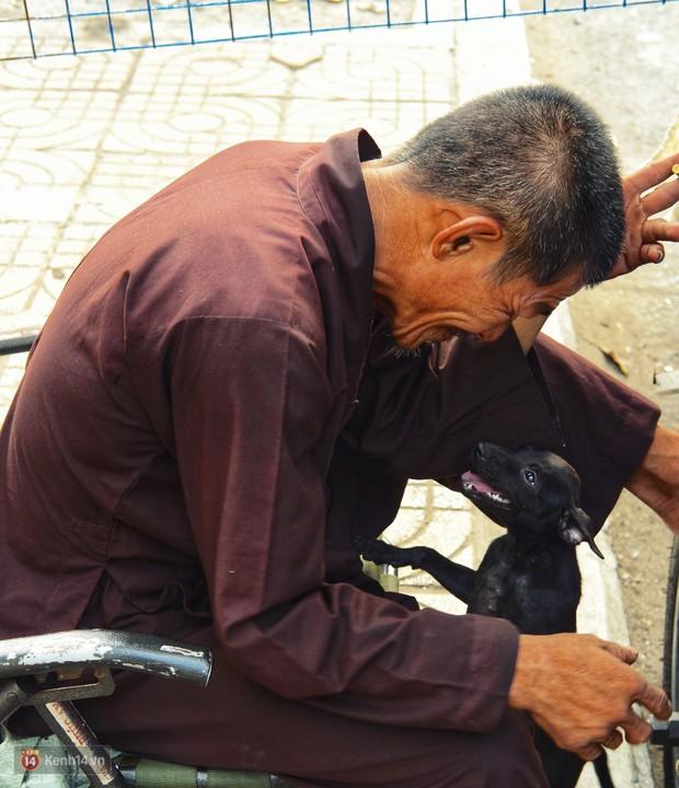 Tấm bảng Chó là bạn, không phải thức ăn của người đàn ông 20 năm bầu bạn với những chú chó ngoài đường phố Sài Gòn - Ảnh 4.