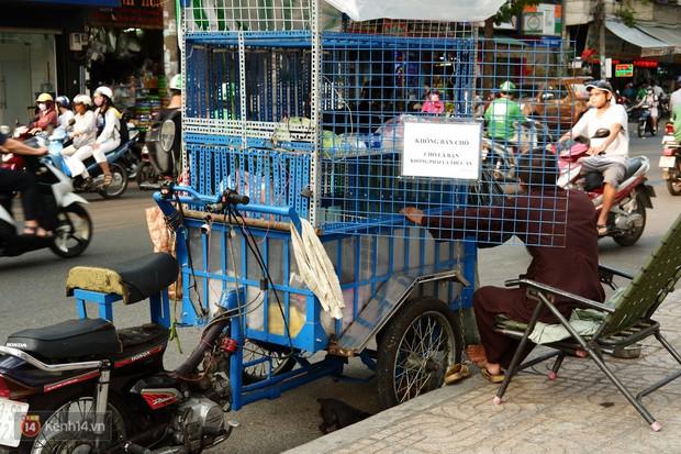 Tấm bảng Chó là bạn, không phải thức ăn của người đàn ông 20 năm bầu bạn với những chú chó ngoài đường phố Sài Gòn - Ảnh 5.