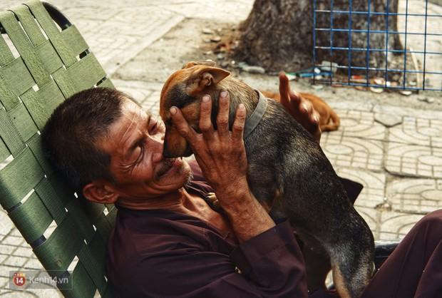 Tấm bảng Chó là bạn, không phải thức ăn của người đàn ông 20 năm bầu bạn với những chú chó ngoài đường phố Sài Gòn - Ảnh 8.