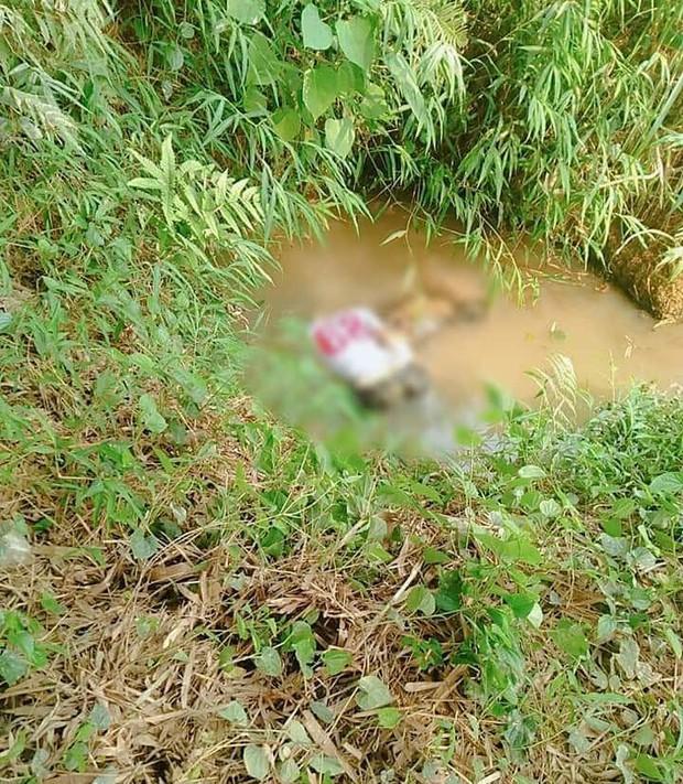 Lào Cai: Hoảng hồn phát hiện thi thể dưới mương nước cạn trong tư thế úp mặt - Ảnh 1.