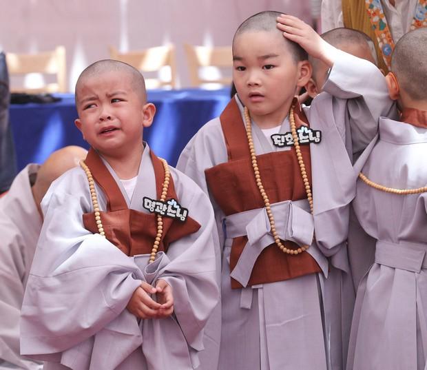 Loạt sắc thái đáng yêu hết nấc của các chú tiểu trong ngày xuống tóc đón lễ Phật Đản ở Hàn Quốc - Ảnh 13.