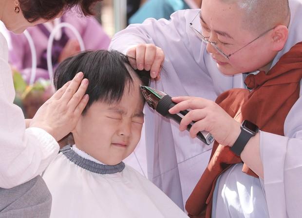 Loạt sắc thái đáng yêu hết nấc của các chú tiểu trong ngày xuống tóc đón lễ Phật Đản ở Hàn Quốc - Ảnh 1.