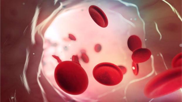 Đây là nhóm máu duy nhất có thể tự động kháng lại căn bệnh giết chết cả triệu người mỗi năm - Ảnh 2.