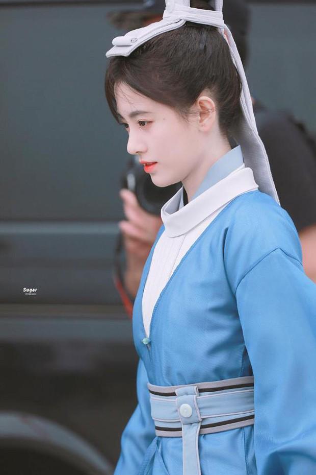 """Sungkyunkwan Scandal bản Trung: Cúc Tịnh Y gia nhập hội """"gái giả trai ai nhìn cũng biết""""? - Ảnh 4."""