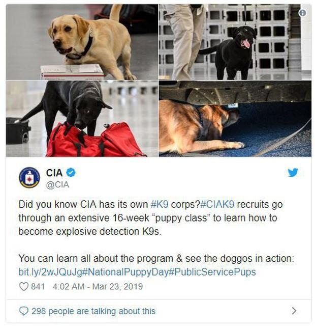 Vì sao CIA lại đang tập tành dùng Instagram? Cùng nghe cựu điệp viên Edward Snowden giải thích - Ảnh 1.