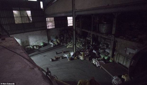 Bên trong nhà máy chế bom mẹ của quỷ Satan của khủng bố ở Sri Lanka - Ảnh 5.