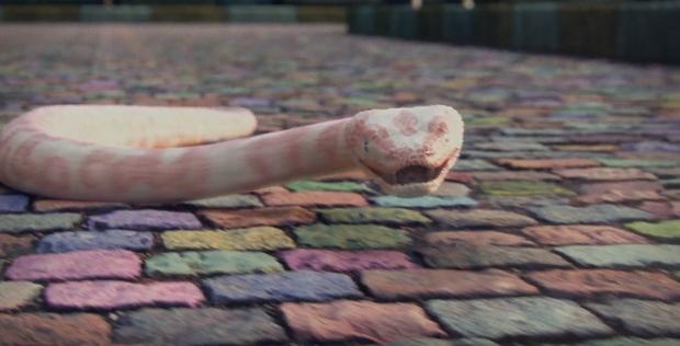 Bom tấn mới nhất Me! chính thức lên sóng: Taylor Swift nói tiếng Pháp, hình tượng rắn chúa đầy mới lạ! - Ảnh 3.