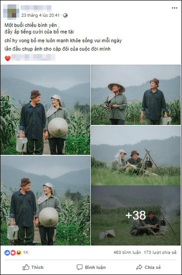 Bộ ảnh con trai chụp bố mẹ trên cánh đồng khiến ai cũng bất giác mỉm cười vì quá đỗi bình yên - Ảnh 1.