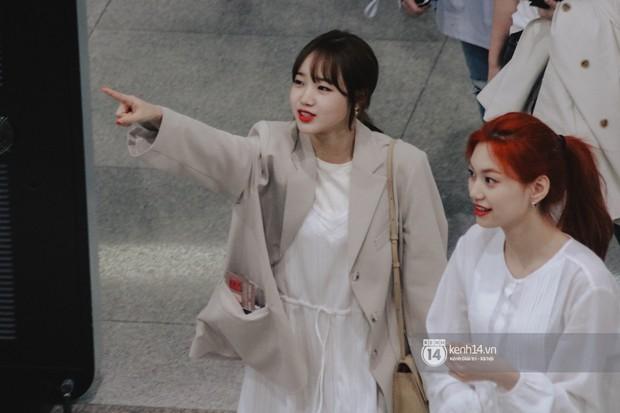Nữ thần Irene khoe nhan sắc đời thực cực phẩm, Red Velvet và Weki Meki vỡ òa trước biển fan tại sân bay Tân Sơn Nhất - Ảnh 8.