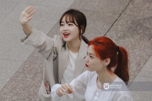 Nữ thần Irene khoe nhan sắc đời thực cực phẩm, Red Velvet và Weki Meki vỡ òa trước biển fan tại sân bay Tân Sơn Nhất - Ảnh 7.
