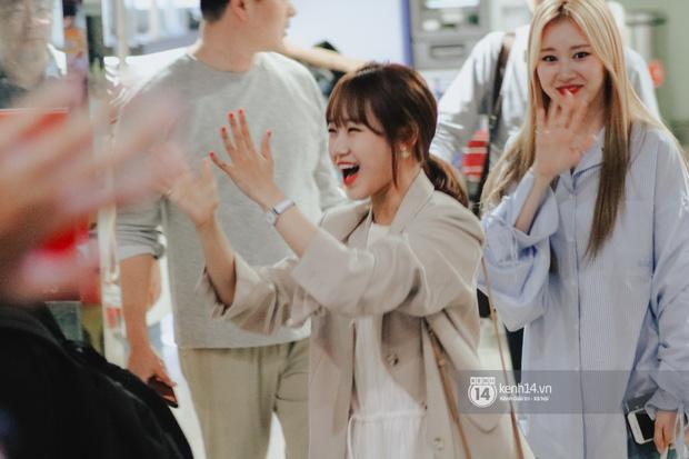 Nữ thần Irene khoe nhan sắc đời thực cực phẩm, Red Velvet và Weki Meki vỡ òa trước biển fan tại sân bay Tân Sơn Nhất - Ảnh 9.