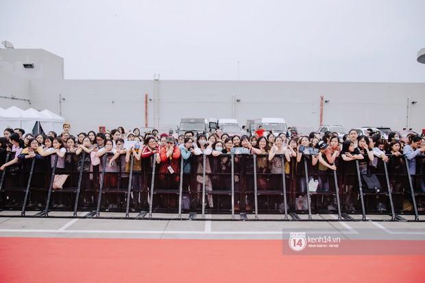 Thảm đỏ hội tụ dàn sao Hàn khủng tại TP.HCM: Lee Kwang Soo lột xác hậu hẹn hò, Trấn Thành được fan săn đón cực nhiệt - Ảnh 1.