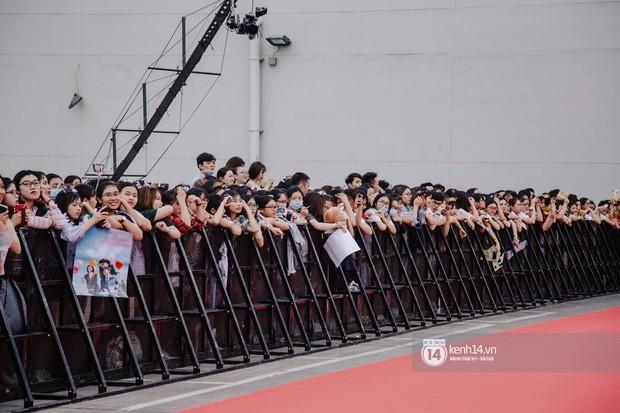 Thảm đỏ hội tụ dàn sao Hàn khủng tại TP.HCM: Lee Kwang Soo lột xác hậu hẹn hò, Trấn Thành được fan săn đón cực nhiệt - Ảnh 3.