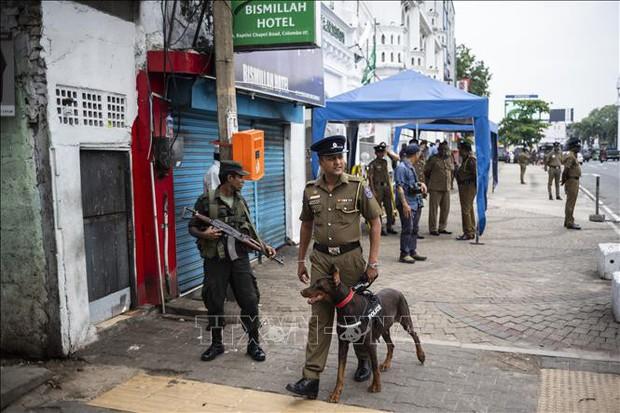 Nổ ở Sri Lanka: Tiêu diệt 4 phần tử tình nghi đánh bom liều chết - Ảnh 1.