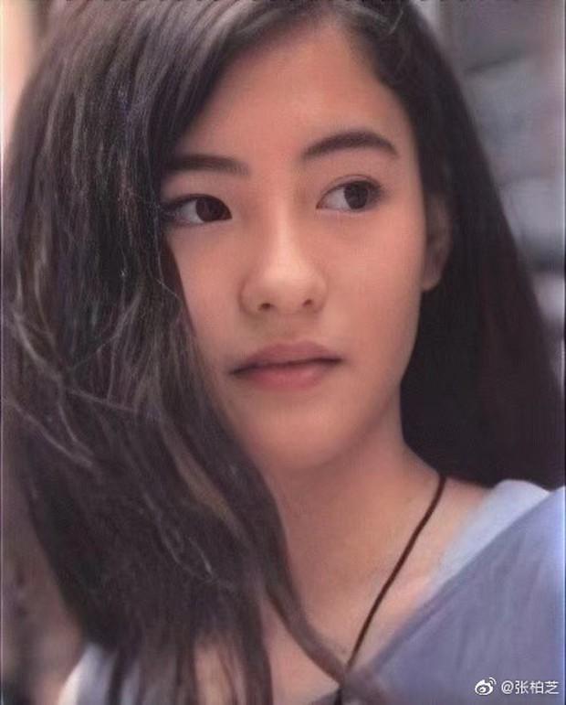Trương Bá Chi năm 12 tuổi đã đẹp nghiêng nước nghiêng thành thế này, bảo sao Tạ Đình Phong từng 1 thời say đắm - Ảnh 3.