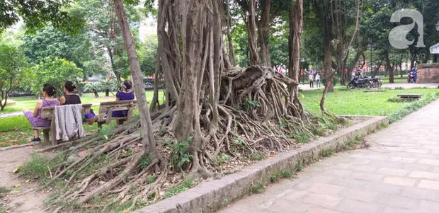 Hà Nội: Ông lão 81 tuổi bị người dân bắt quả tang sàm sỡ cô gái tâm thần trong nhà vệ sinh công cộng - Ảnh 6.