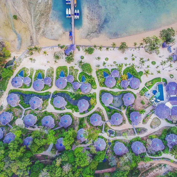 Treo mình như Tarzan ngoài đời thực ở resort 5 sao trên cây đang là tâm điểm Thái Lan - Ảnh 6.