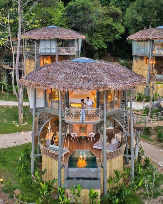 Treo mình như Tarzan ngoài đời thực ở resort 5 sao trên cây đang là tâm điểm Thái Lan - Ảnh 4.