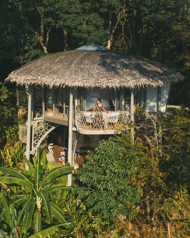 Treo mình như Tarzan ngoài đời thực ở resort 5 sao trên cây đang là tâm điểm Thái Lan - Ảnh 14.