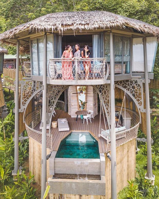 Treo mình như Tarzan ngoài đời thực ở resort 5 sao trên cây đang là tâm điểm Thái Lan - Ảnh 2.