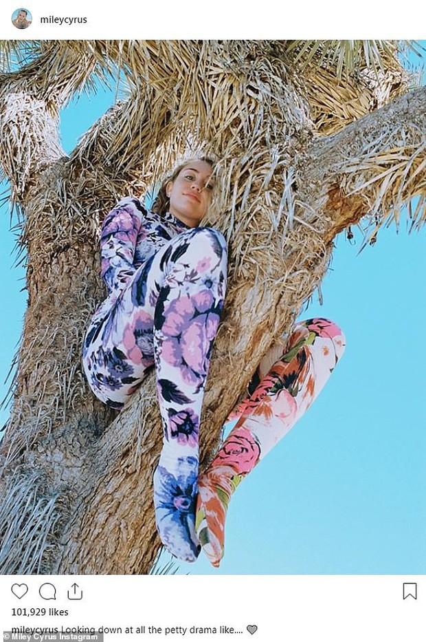 Bức ảnh tưởng không có gì mà gây phẫn nộ của Miley Cyrus: Chính chủ nhận gạch vì trèo lên cây quý để sống ảo - Ảnh 2.
