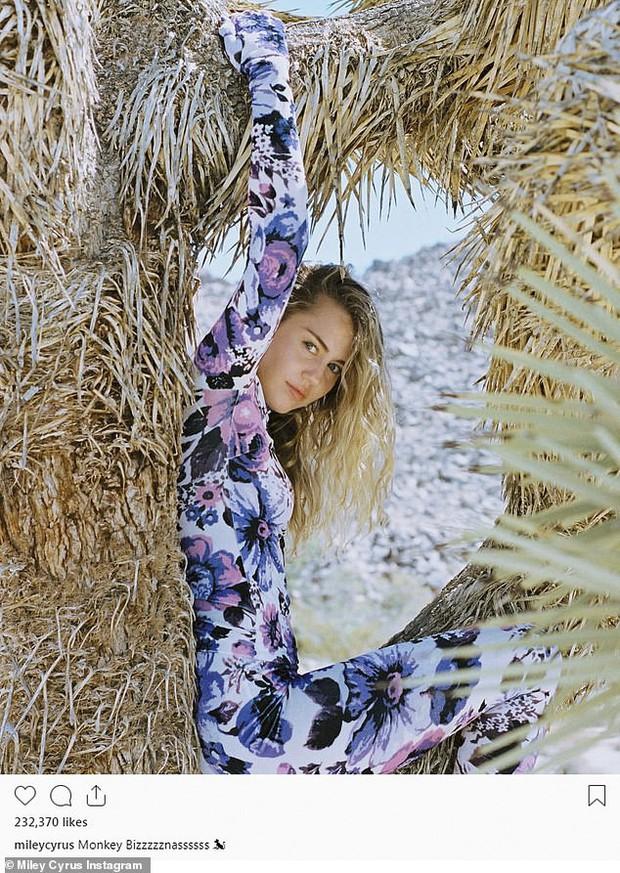 Bức ảnh tưởng không có gì mà gây phẫn nộ của Miley Cyrus: Chính chủ nhận gạch vì trèo lên cây quý để sống ảo - Ảnh 1.
