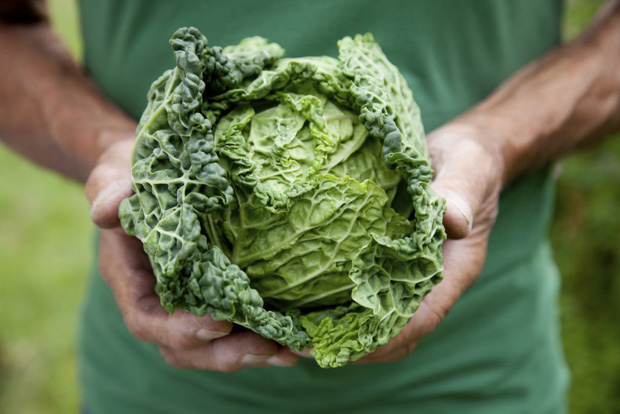 Chăm bổ sung những loại thực phẩm này giúp bạn thu về đủ lợi ích từ trong ra ngoài - Ảnh 3.