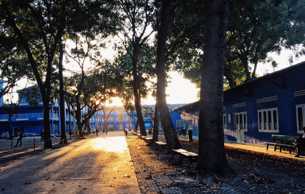 Trường Đại học với màu xanh siêu đẹp mắt, khung cảnh thơ mộng như trong truyện tranh Nhật Bản - Ảnh 6.
