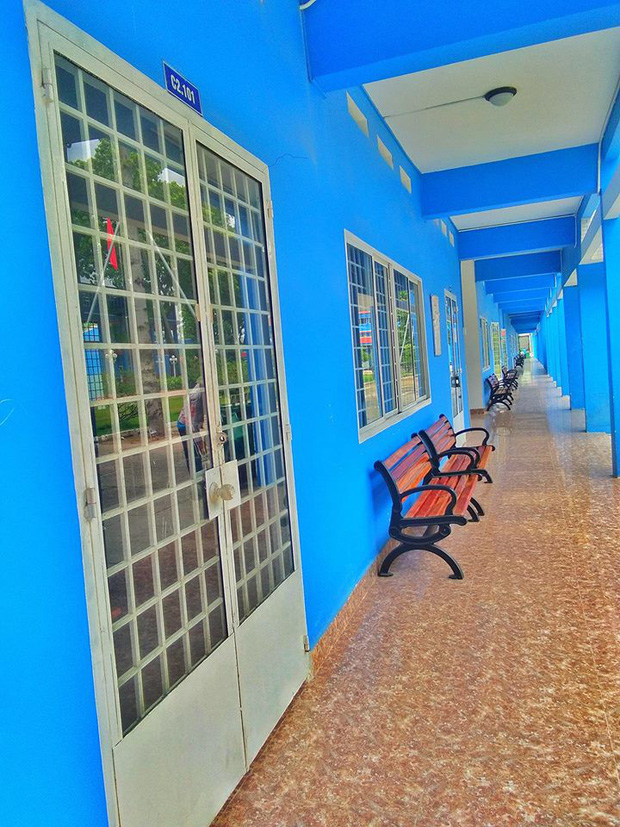 Trường Đại học với màu xanh siêu đẹp mắt, khung cảnh thơ mộng như trong truyện tranh Nhật Bản - Ảnh 8.