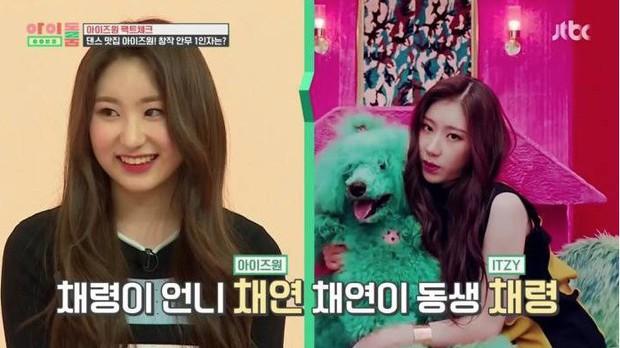 Chaeyeon (IZ*ONE) nhảy hit của em gái Chaeryeong (ITZY): Như 2 giọt nước! - Ảnh 2.