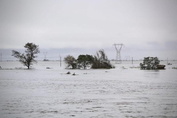 Lũ lụt không tới được bệnh viện, sản phụ đành trèo lên cây sinh con trong cơn bão Idai dữ dội - Ảnh 2.