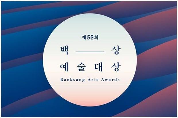 Danh sách tranh giải Baeksang 2019: SKY Castle bao sân, hạng mục nào cũng có mặt - Ảnh 5.