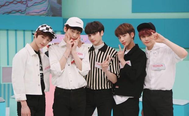 2 nhóm tân binh gồm các cựu thành viên Wanna One chốt đội hình, dự đoán ăn đứt boygroup mới nhà YG khoản này - Ảnh 3.