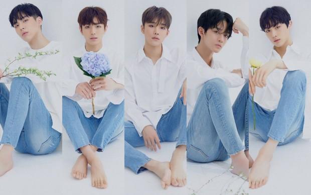 2 nhóm tân binh gồm các cựu thành viên Wanna One chốt đội hình, dự đoán ăn đứt boygroup mới nhà YG khoản này - Ảnh 2.