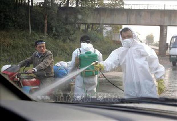 Phát hiện bệnh nhân 82 tuổi nhiễm cúm gia cầm H7N9 - Ảnh 1.