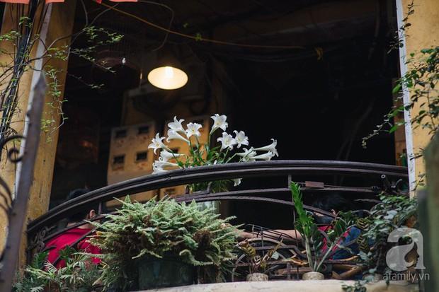 Tháng 4 về, Hà Nội lại dịu dàng những gánh loa kèn trắng tinh khôi, thơm nồng nàn khắp các góc phố - Ảnh 1.