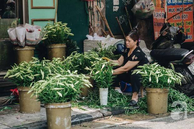 Tháng 4 về, Hà Nội lại dịu dàng những gánh loa kèn trắng tinh khôi, thơm nồng nàn khắp các góc phố - Ảnh 9.