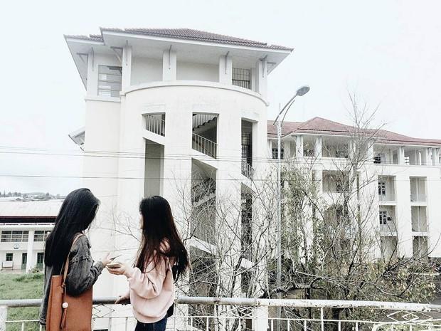 Quên Cao Đẳng Sư Phạm đi, Đà Lạt còn có một ngôi trường sống ảo đẹp chẳng thua Hàn Quốc đây này! - Ảnh 21.