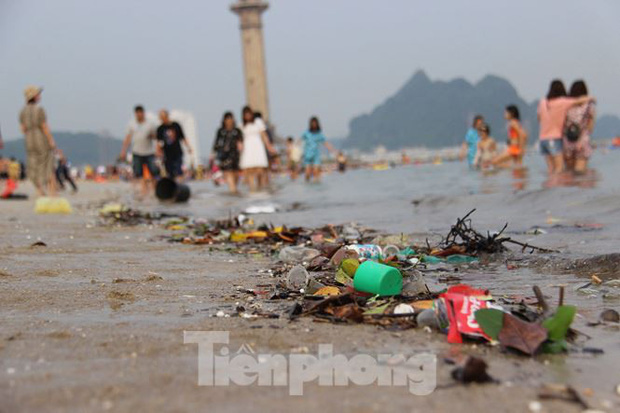Trẻ ngụp lặn bơi trong rác biển ở Hạ Long - Ảnh 3.