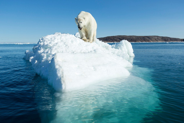 Ireland tuyên bố tình trạng khẩn cấp về khí hậu - Ảnh 1.
