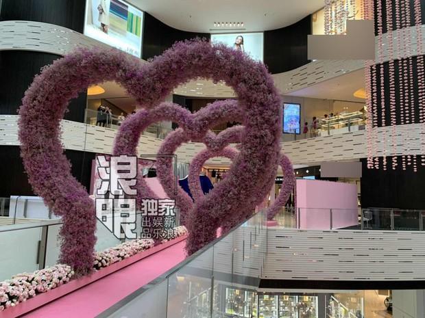 Hé lộ quang cảnh 99,999 đoá hồng thiếu gia trùm sòng bạc Macau chuẩn bị cho màn cầu hôn chân dài Victorias Secret - Ảnh 3.