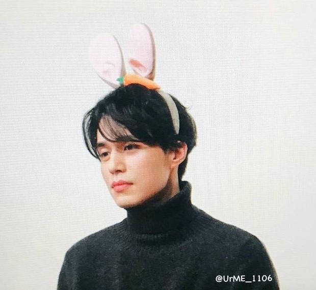 Tội cho chú già đẹp trai Lee Dong Wook, U40 rồi mà fan vẫn bắt đội mũ tai thỏ, hoa bèo nhìn khổ tâm hết sức - Ảnh 1.