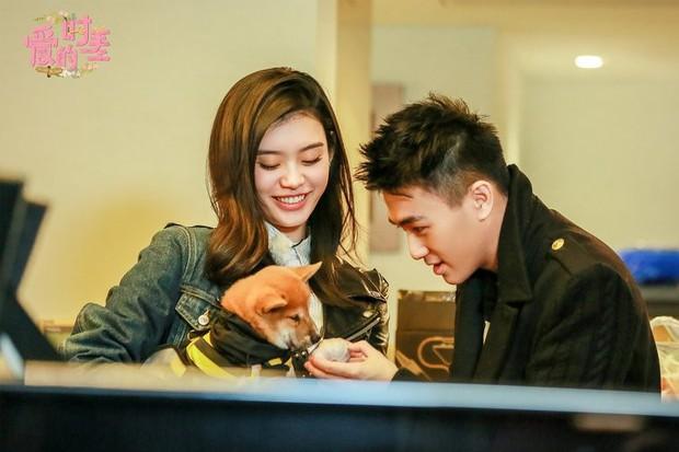 Hé lộ quang cảnh 99,999 đoá hồng thiếu gia trùm sòng bạc Macau chuẩn bị cho màn cầu hôn chân dài Victorias Secret - Ảnh 11.