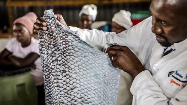 Những tấm da cá có mùi tanh vạn người chê được nâng tầm thành các món thời trang cao cấp mang thương hiệu Dior, Salvatore Ferragamo như thế nào? - Ảnh 4.