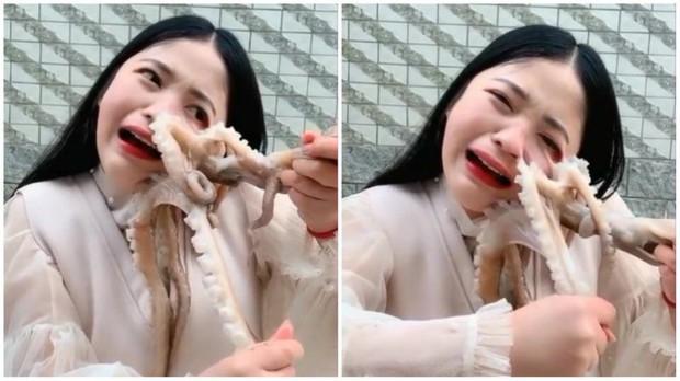Hot girl livestream cảnh ăn bạch tuộc sống, bị con vật tấn công đến chảy máu nhưng dân mạng lại còn mắng cho vì lý do này - Ảnh 3.
