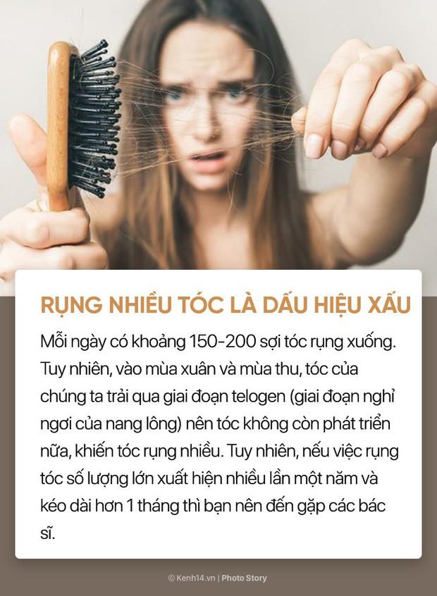 8 hiểu lầm to tướng về chăm sóc tóc mà hội chị, em vẫn truyền tai nhau - Ảnh 1.