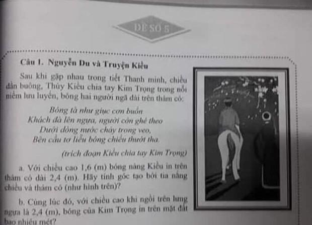 Truyện Kiều vào đề toán, học sinh phải tính bóng của Kim Trọng in trên mặt đất - Ảnh 1.