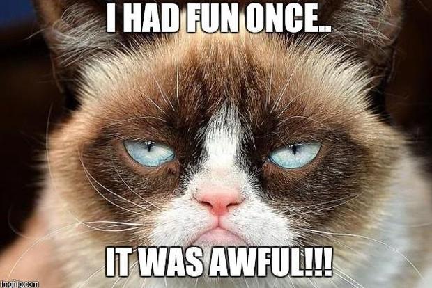 Grumpy Cat - cô mèo cáu kỉnh nhất thế giới với hơn 8 triệu người theo dõi đã qua đời - Ảnh 2.