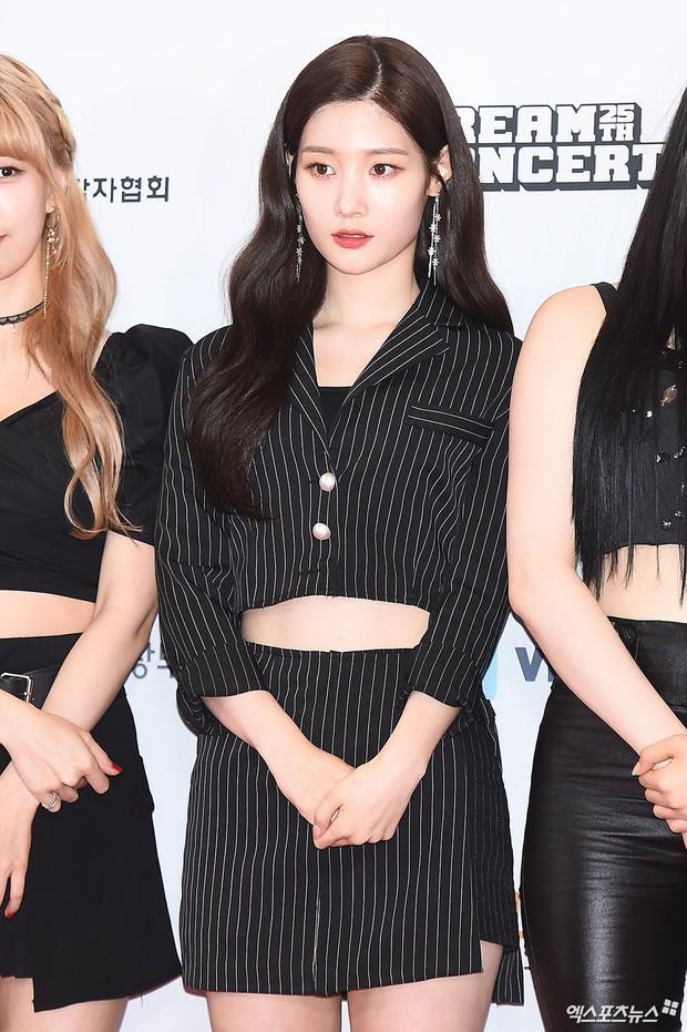 Thảm đỏ Dream Concert 2019: Park Bom lên cân nhưng vẫn chiếm spotlight của Red Velvet và cả dàn nữ thần Kpop - Ảnh 13.